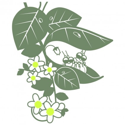 vinilos infantiles insectos naturaleza jardín bebés mariquitas