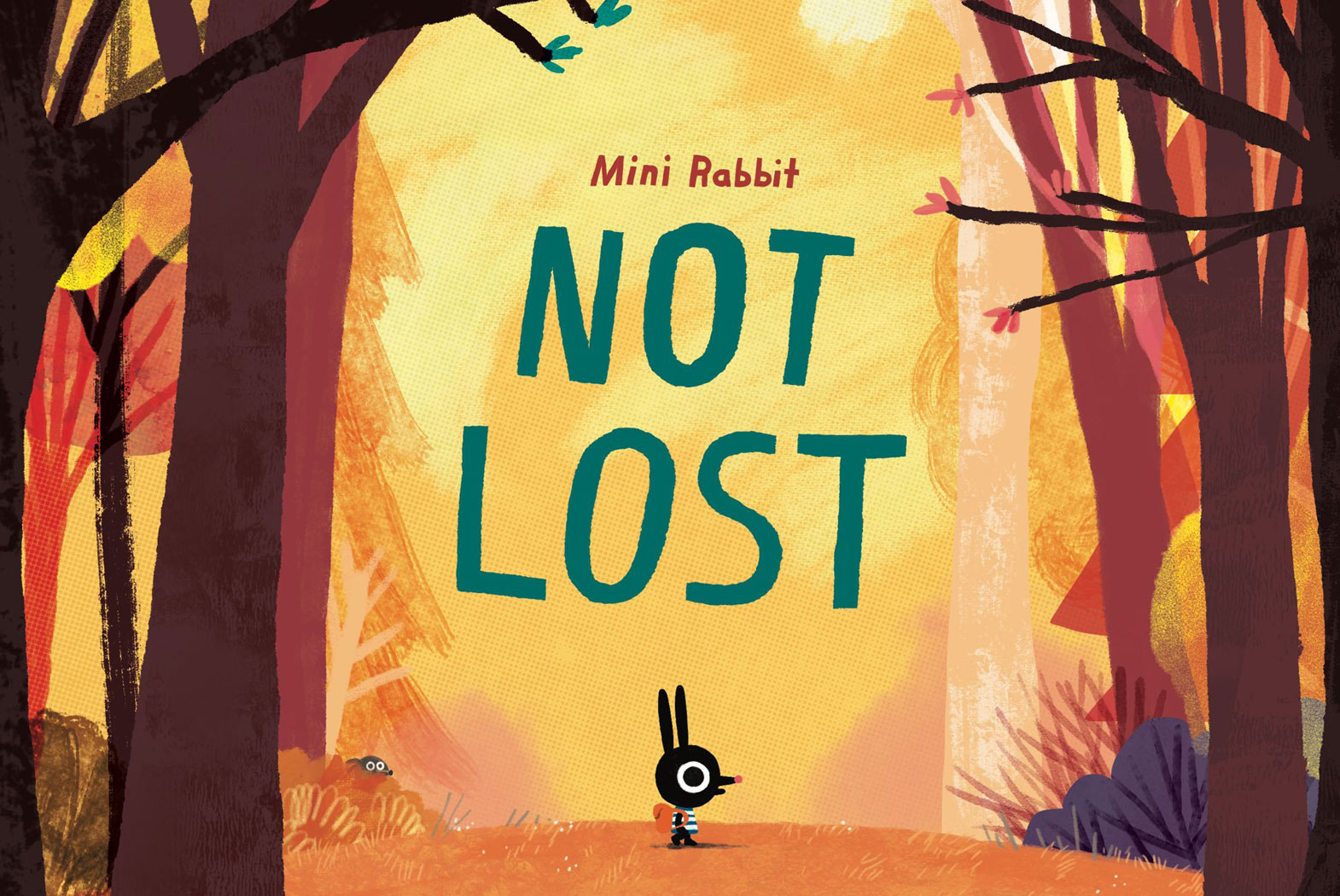 Mini Rabbit Not Lost - John Bond